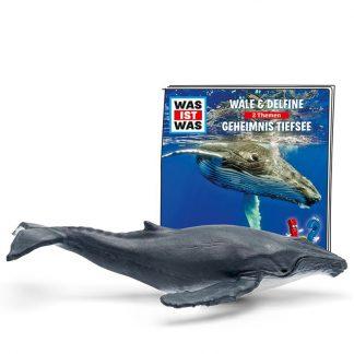 Was ist was - Wale & Delfine, Geheimnis Tiefsee